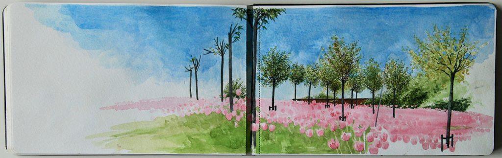Garden Sketchbook