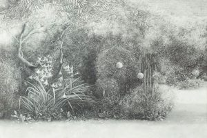 The Garden at Preston, 2007 pencil on paper.